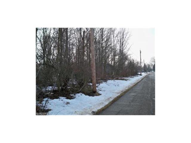 231 Meadowbrook Ave NE, Alliance, OH 44601 (MLS #3676852) :: PERNUS & DRENIK Team