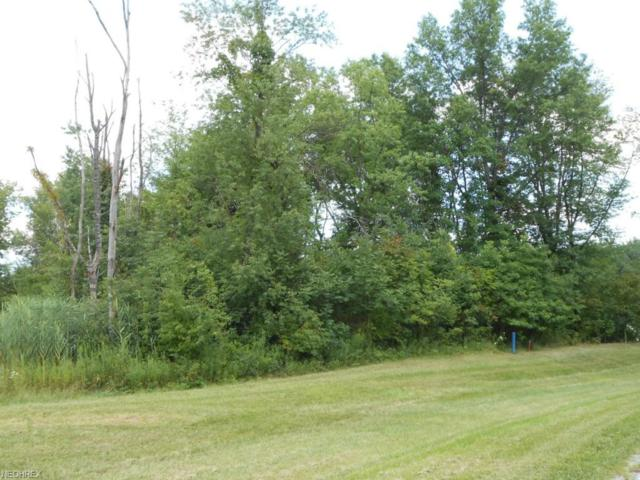 447 Crown Pointe Parkway, Cuyahoga Falls, OH 44223 (MLS #3696793) :: RE/MAX Trends Realty