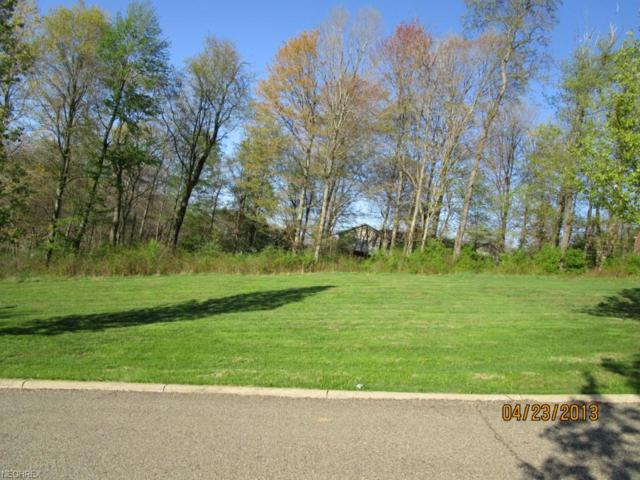 Rainer Way, Zanesville, OH 43701 (MLS #3704434) :: The Art of Real Estate