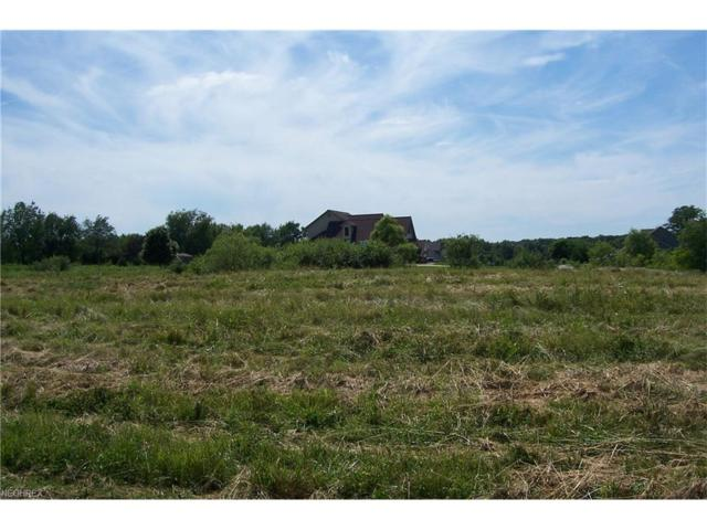 Crowberry Dr, North Lima, OH 44452 (MLS #3763356) :: Tammy Grogan and Associates at Cutler Real Estate