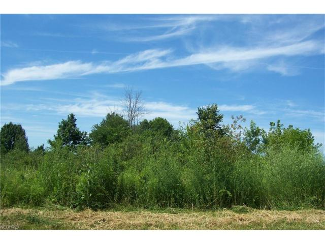 Sageberry Dr, North Lima, OH 44452 (MLS #3763368) :: Tammy Grogan and Associates at Cutler Real Estate