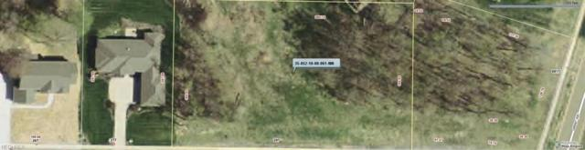297 Sapphire Lane, Streetsboro, OH 44241 (MLS #3766859) :: The Jess Nader Team | RE/MAX Pathway
