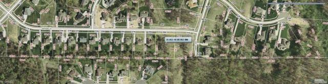 294 Sapphire Lane, Streetsboro, OH 44241 (MLS #3766866) :: RE/MAX Valley Real Estate