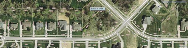 135 Emerald Ave, Streetsboro, OH 44241 (MLS #3766924) :: RE/MAX Edge Realty