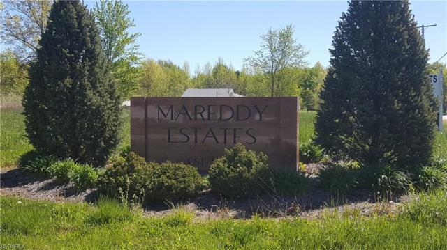 27-SL Mareddy Dr, Ashtabula, OH 44004 (MLS #3803379) :: The Crockett Team, Howard Hanna