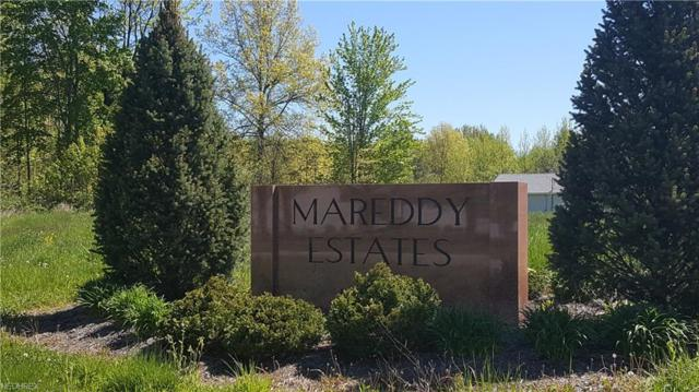 1 Mareddy Drive, Ashtabula, OH 44004 (MLS #3803422) :: Krch Realty