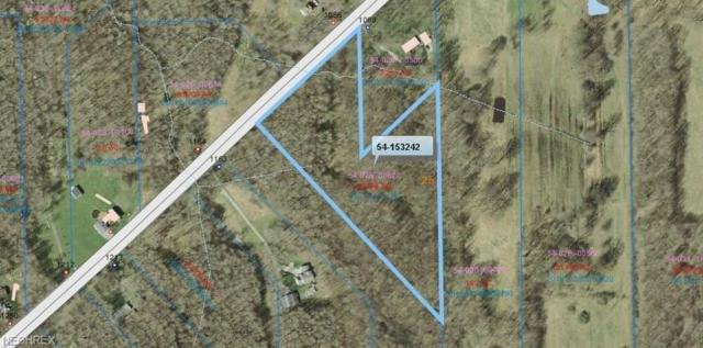 V-L Kale Adams Rd, Leavittsburg, OH 44430 (MLS #3804028) :: The Crockett Team, Howard Hanna