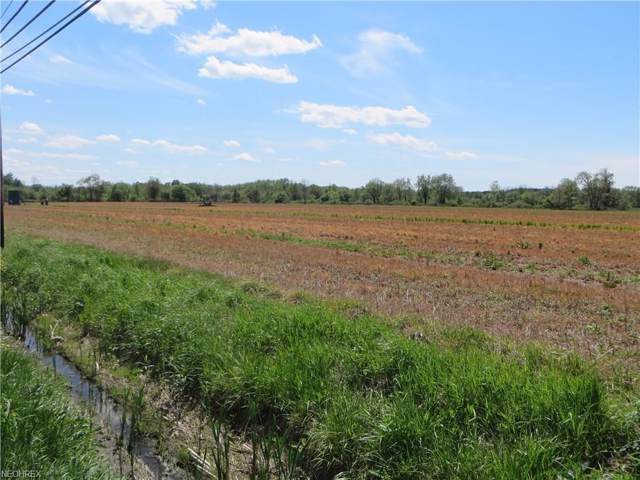 VL State Route 45, Austinburg, OH 44010 (MLS #3808919) :: Select Properties Realty