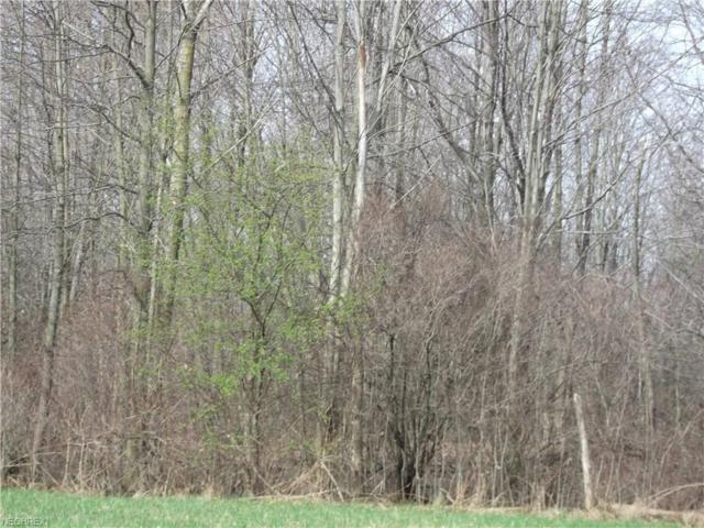 6160 State Route 45, Lordstown, OH 44481 (MLS #3809480) :: Keller Williams Chervenic Realty