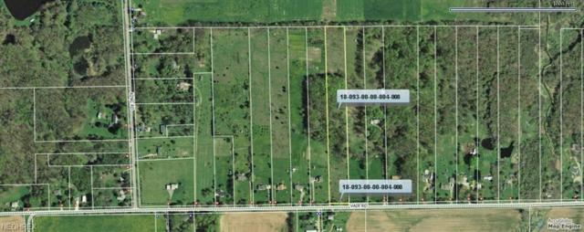 Vair Rd, Ravenna, OH 44266 (MLS #3816901) :: Keller Williams Chervenic Realty