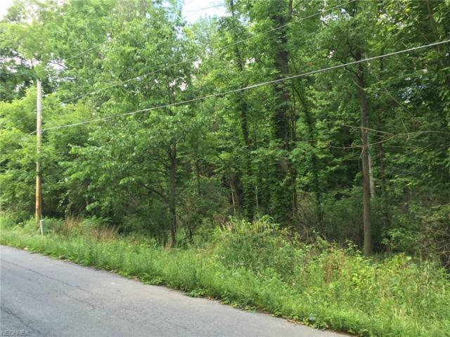 Amy Boyle Road, Brookfield, OH 44403 (MLS #3824750) :: RE/MAX Edge Realty