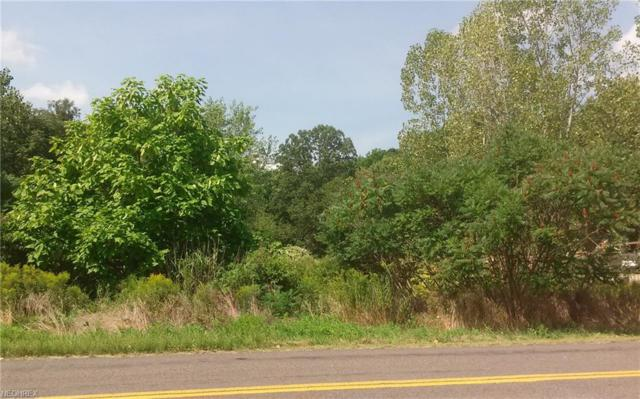 Mogadore Rd, Tallmadge, OH 44278 (MLS #3844773) :: RE/MAX Valley Real Estate