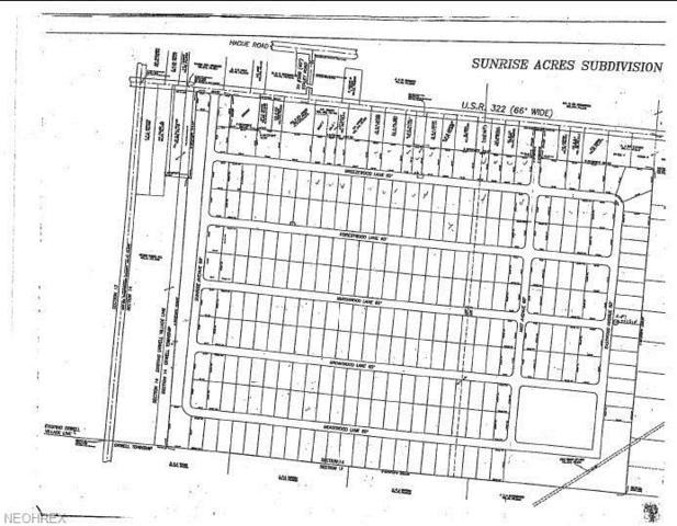 Phase II Sunrise Acres, Orwell, OH 44076 (MLS #3847445) :: PERNUS & DRENIK Team