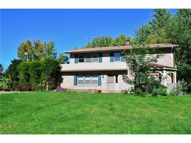 3049 Sandy Lake Rd, Ravenna, OH 44266 (MLS #3851459) :: Tammy Grogan and Associates at Cutler Real Estate