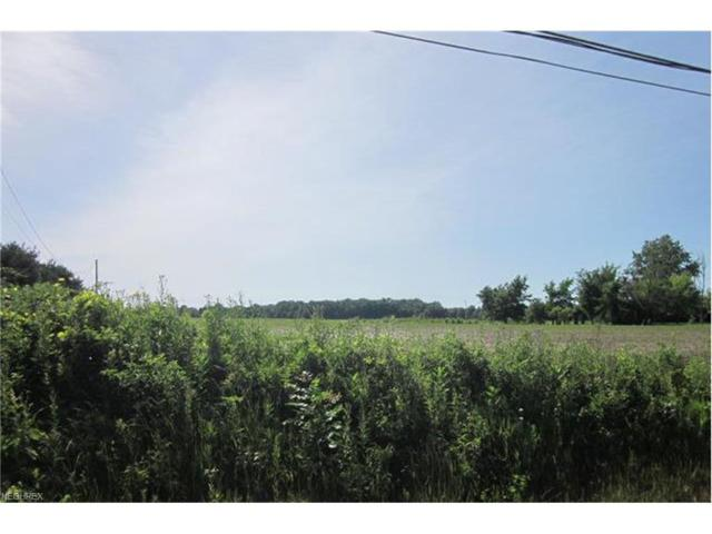 State Rd 60, Wakeman, OH 44889 (MLS #3851982) :: Tammy Grogan and Associates at Cutler Real Estate