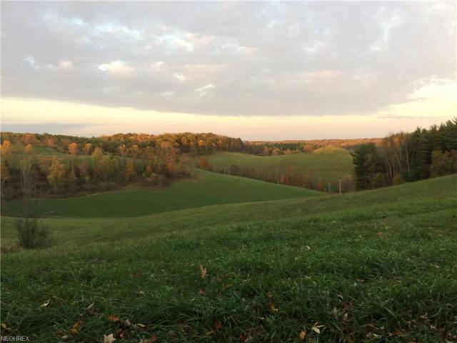 Holly Road, Dellroy, OH 44620 (MLS #3855147) :: Keller Williams Chervenic Realty