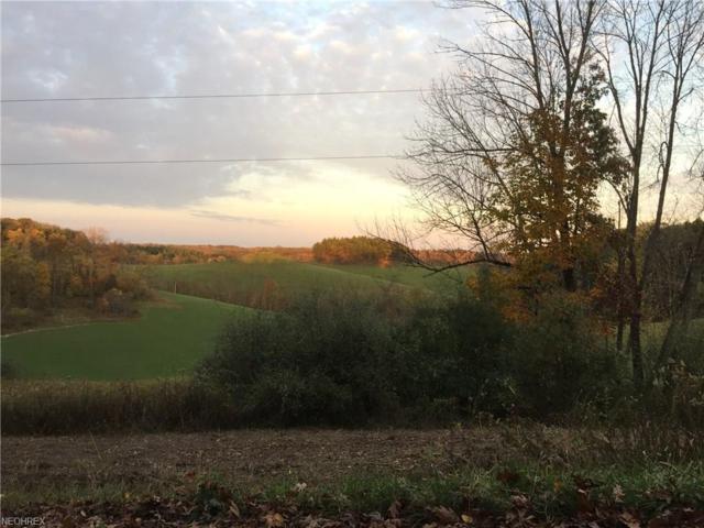 Holly Road, Dellroy, OH 44620 (MLS #3855235) :: Keller Williams Chervenic Realty