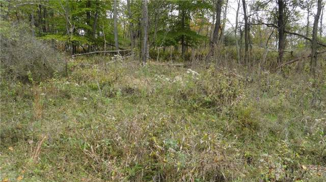 Bryden Rd - Lot # 40, Weirton, WV 26062 (MLS #3855861) :: Select Properties Realty