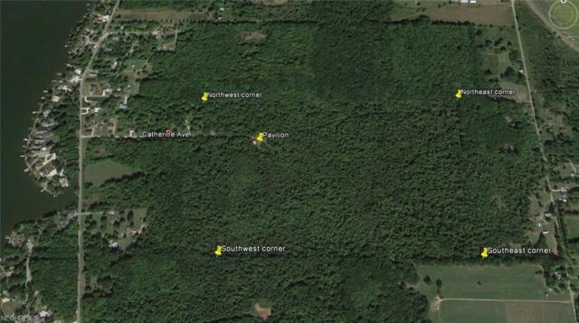 16600 Catherine Ave, Lake Milton, OH 44429 (MLS #3865285) :: Keller Williams Chervenic Realty