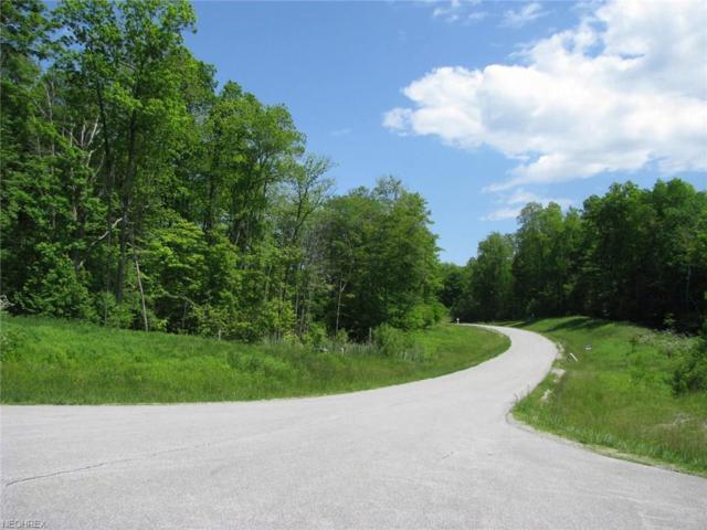 7 Steelhead Run, Chardon, OH 44024 (MLS #3869365) :: Keller Williams Chervenic Realty