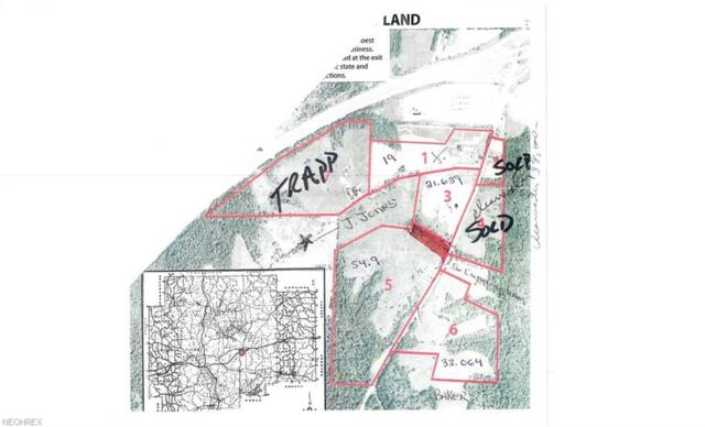 Lot # 1 Wintergreen Road, Lore City, OH 43755 (MLS #3879952) :: The Crockett Team, Howard Hanna
