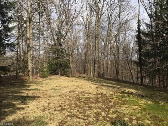 Ira Road, Akron, OH 44333 (MLS #3889672) :: TG Real Estate