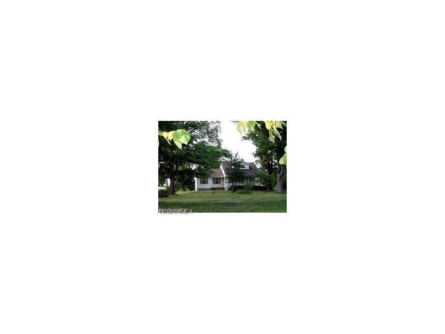 12112 Butternut Rd, Newbury, OH 44065 (MLS #3901441) :: The Crockett Team, Howard Hanna