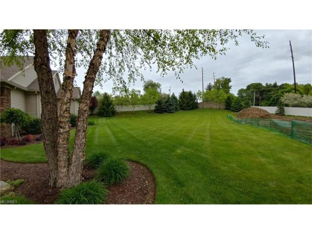 Serenity Dr NW, Massillon, OH 44646 (MLS #3902745) :: The Crockett Team, Howard Hanna