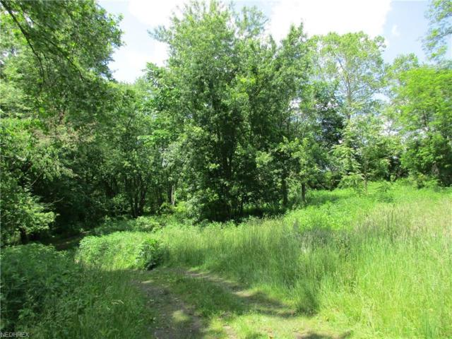 Water St, Lowellville, OH 44436 (MLS #3909633) :: RE/MAX Edge Realty