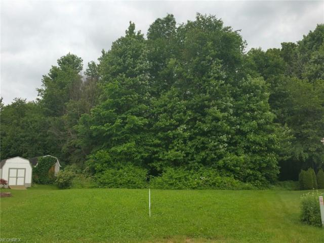 Lot 17 Emorey Cir, Lakemore, OH 44312 (MLS #3910248) :: Tammy Grogan and Associates at Cutler Real Estate