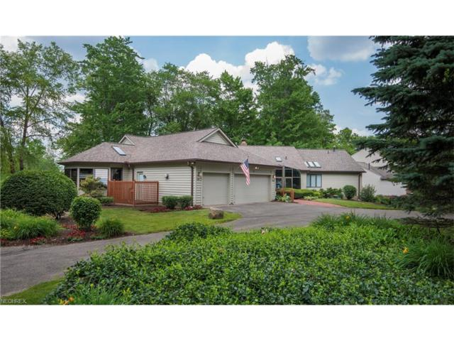 441 Long Dr, Chagrin Falls, OH 44023 (MLS #3913463) :: RE/MAX Trends Realty