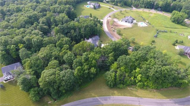 V/L Rolling Meadows Drive, Garrettsville, OH 44231 (MLS #3913601) :: RE/MAX Valley Real Estate