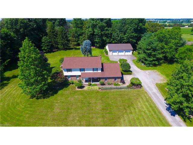 13752 Columbiana Canfield Rd, Columbiana, OH 44408 (MLS #3915171) :: RE/MAX Valley Real Estate