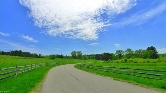 SL 1 Hunting Ridge Road, Chesterland, OH 44026 (MLS #3918699) :: The Art of Real Estate