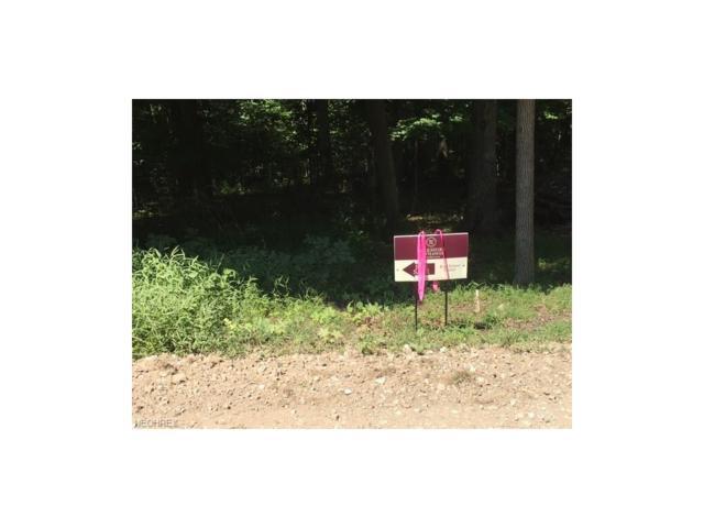 00 Champion School Road, Belleville, WV 26133 (MLS #3921025) :: Tammy Grogan and Associates at Cutler Real Estate
