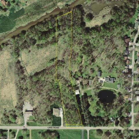 8020 Lake Rd, Chippewa Lake, OH 44273 (MLS #3921945) :: Keller Williams Chervenic Realty