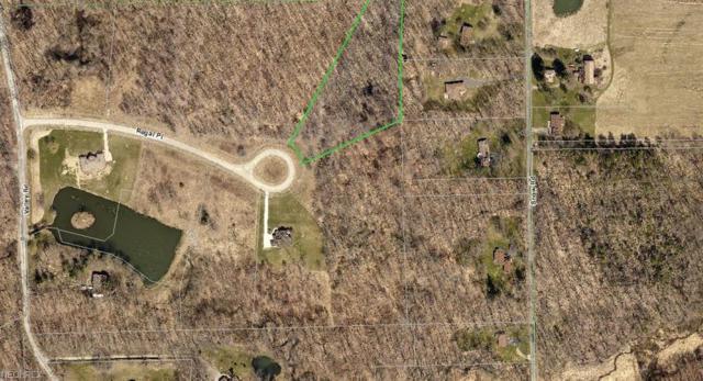 S/L 5 Regal Pl, Auburn, OH 44023 (MLS #3923443) :: RE/MAX Edge Realty
