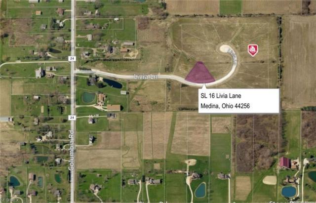SL 16 Livia Lane, Medina, OH 44256 (MLS #3931828) :: The Art of Real Estate