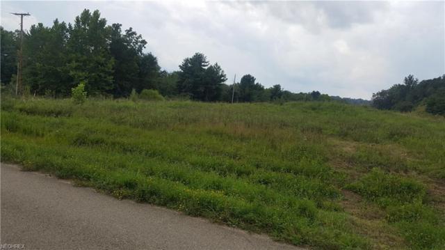 Township Road 196 Lot 11&12, Crooksville, OH 43731 (MLS #3932099) :: The Crockett Team, Howard Hanna