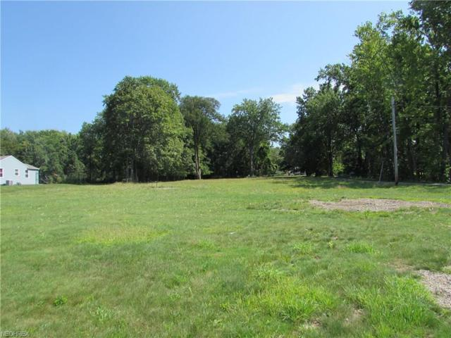 29500 Ridge Rd, Wickliffe, OH 44092 (MLS #3933456) :: RE/MAX Valley Real Estate