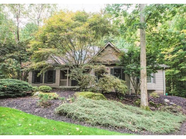 8361 Lucerne Dr, Chagrin Falls, OH 44023 (MLS #3941895) :: The Crockett Team, Howard Hanna