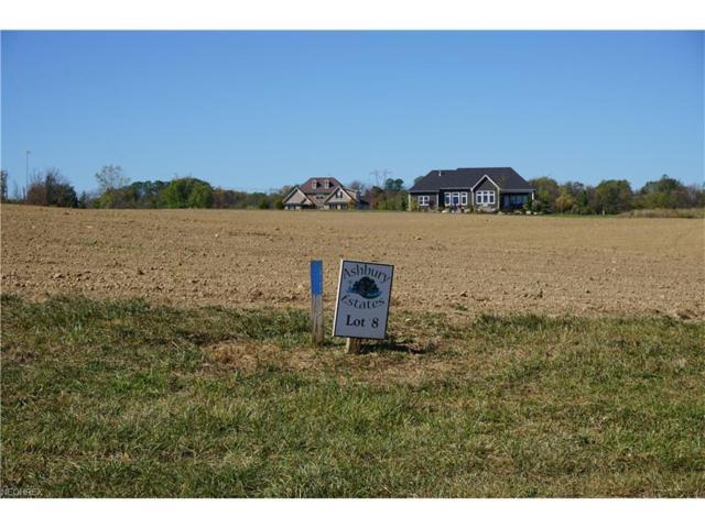 4056 Argyle Ln, Medina, OH 44256 (MLS #3945517) :: Tammy Grogan and Associates at Cutler Real Estate