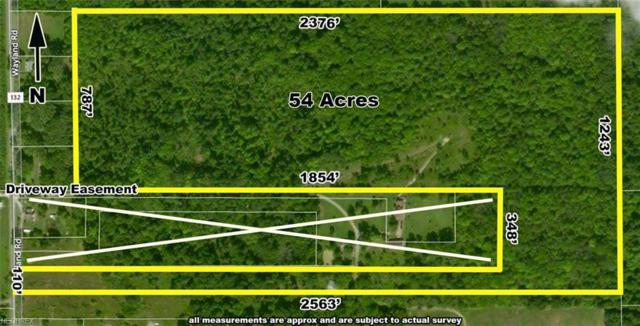 2390 Wayland Rd, Deerfield, OH 44411 (MLS #3946425) :: PERNUS & DRENIK Team