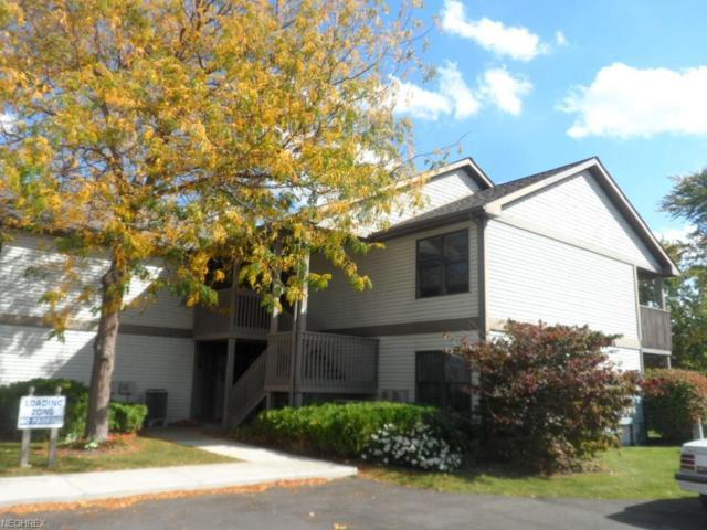 5237 Lake Rd W #1027, Ashtabula, OH 44004 (MLS #3947079) :: RE/MAX Trends Realty
