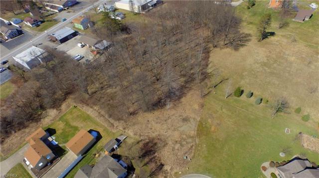Lynn Pl, Warren, OH 44483 (MLS #3947225) :: Tammy Grogan and Associates at Cutler Real Estate