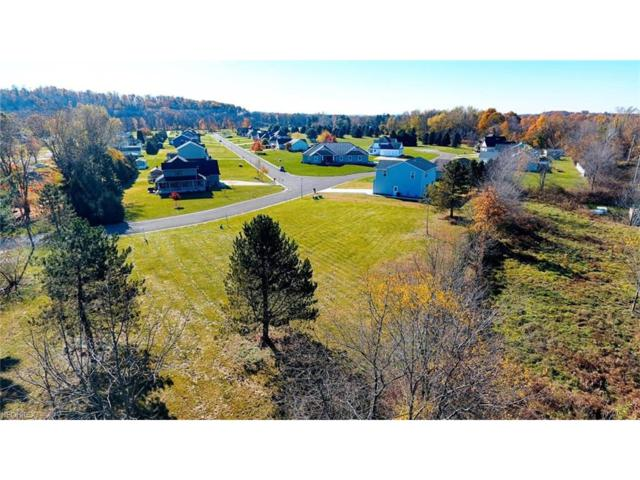 Shane Ave, Waynesburg, OH 44688 (MLS #3952240) :: The Crockett Team, Howard Hanna