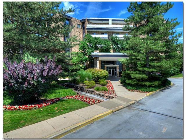 2202 Acacia Park Dr #2216, Lyndhurst, OH 44124 (MLS #3956601) :: The Crockett Team, Howard Hanna