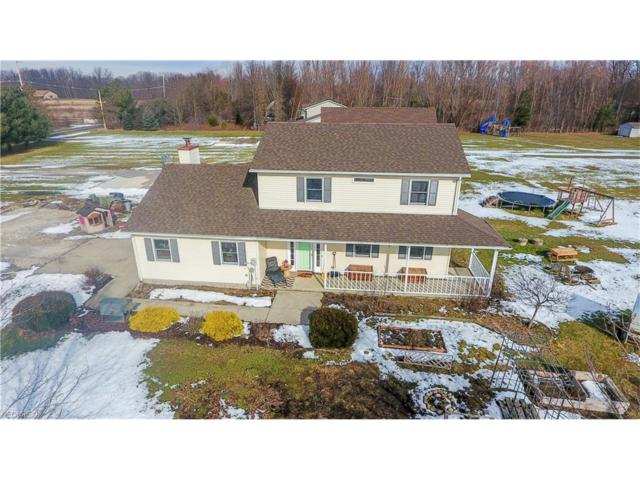 13785 Oberlin Rd, Oberlin, OH 44074 (MLS #3956930) :: Tammy Grogan and Associates at Cutler Real Estate
