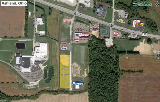Commerce Pky, Ashland, OH 44805 (MLS #3959621) :: Keller Williams Chervenic Realty