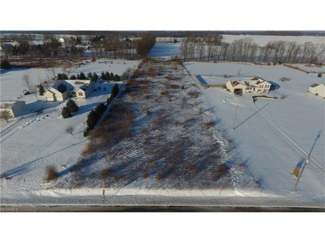 V-L Asbury Rd, Mantua, OH 44255 (MLS #3964942) :: Tammy Grogan and Associates at Cutler Real Estate